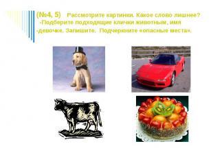 (№4, 5) Рассмотрите картинки. Какое слово лишнее? -Подберите подходящие клички ж