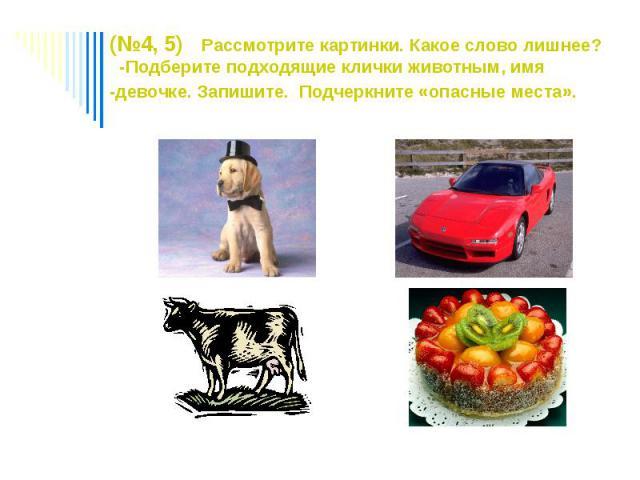 (№4, 5) Рассмотрите картинки. Какое слово лишнее? -Подберите подходящие клички животным, имя -девочке. Запишите. Подчеркните «опасные места».