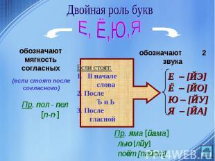 Двойная роль букв обозначают мягкость согласныхЕсли стоят:В начале слова2. После