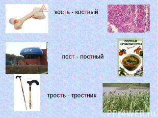 кость - костныйпост - постныйтрость - тростник
