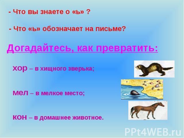 - Что вы знаете о «ь» ? - Что «ь» обозначает на письме? Догадайтесь, как превратить: хор – в хищного зверька;мел – в мелкое место;кон – в домашнее животное.