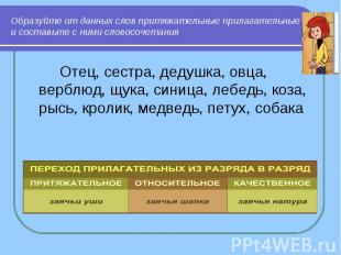 Образуйте от данных слов притяжательные прилагательные и составьте с ними словос