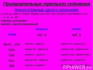 Прилагательные третьего склонения ПРИЛАГАТЕЛЬНЫЕ ОДНОГО ОКОНЧАНИЯВ nom.sg. имеют