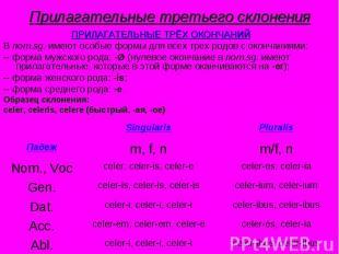 Прилагательные третьего склонения ПРИЛАГАТЕЛЬНЫЕ ТРЁХ ОКОНЧАНИЙВ nom.sg. имеют о