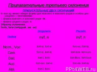 Прилагательные третьего склонения ПРИЛАГАТЕЛЬНЫЕ ДВУХ ОКОНЧАНИЙВ nom.sg. имеют о