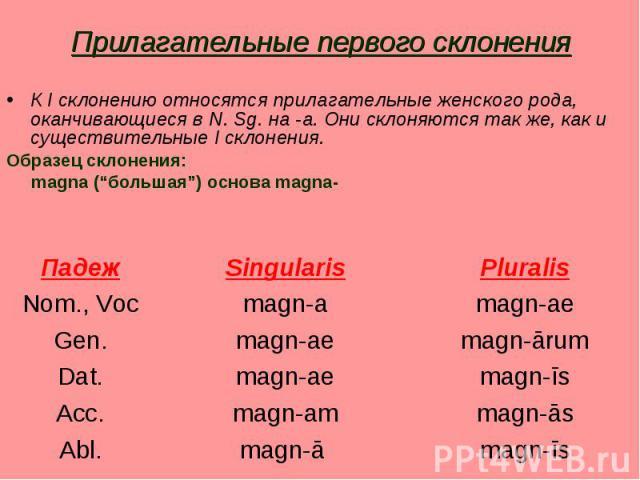 """Прилагательные первого склонения К I склонению относятся прилагательные женского рода, оканчивающиеся в N. Sg. на -a. Они склоняются так же, как и существительные I склонения.Образец склонения: magna (""""большая"""") основа magna-"""