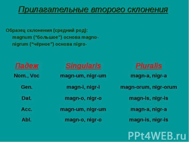 """Прилагательные второго склонения Образец склонения (средний род): magnum (""""большое"""") основа magno- nigrum (""""чёрное"""") основа nigro-"""