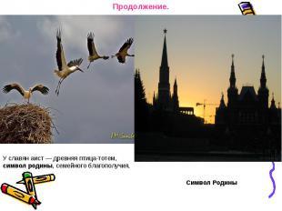 Продолжение. У славян аист — древняя птица-тотем, символ родины, семейного благо