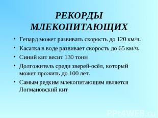Гепард может развивать скорость до 120 км/ч. Гепард может развивать скорость до