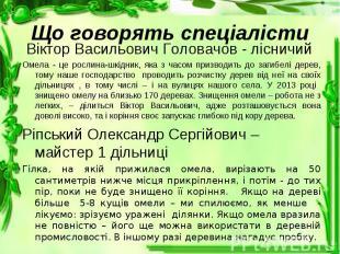 Віктор Васильович Головачов - лісничий Віктор Васильович Головачов - лісничий Ом