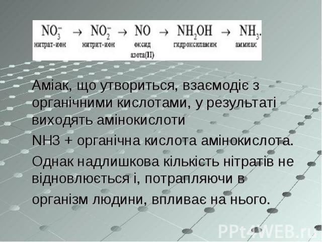 Аміак, що утвориться, взаємодіє з органічними кислотами, у результаті виходять амінокислоти NH3+органічна кислотаамінокислота. Однак надлишкова кількість нітратів не відновлюється і, потрапляючи в організм людини, впливає на нього.