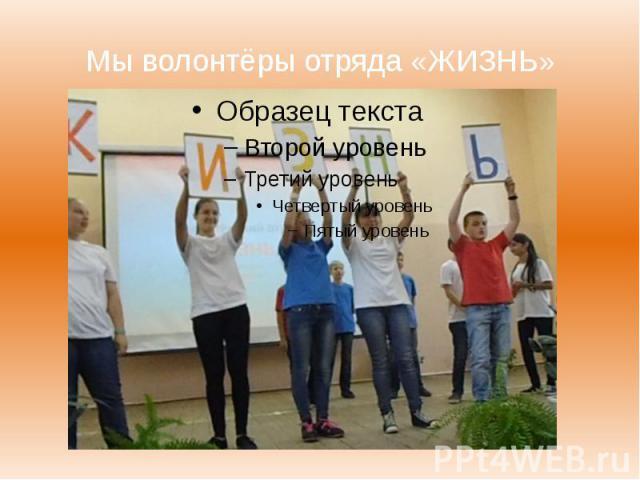 Мы волонтёры отряда «ЖИЗНЬ»