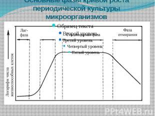 Основные фазы кривой роста периодической культуры микроорганизмов