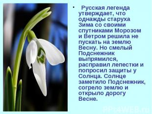 Русская легенда утверждает, что однажды старуха Зима со своими спутниками Морозо