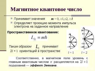 Принимает значения m = 0, ±1,±2, ± lОпределяет проекцию момента импульса электро