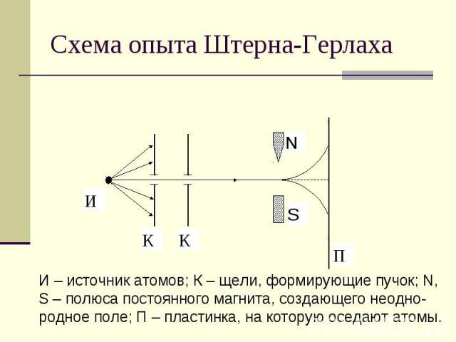 Схема опыта Штерна-Герлаха И – источник атомов; К – щели, формирующие пучок; N, S – полюса постоянного магнита, создающего неодно- родное поле; П – пластинка, на которую оседают атомы.