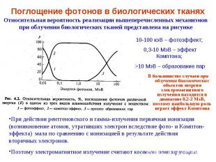 Относительная вероятность реализации вышеперечисленных механизмов при облучении