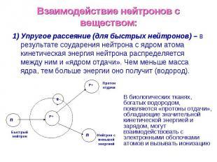 Взаимодействие нейтронов с веществом: 1) Упругое рассеяние (для быстрых нейтроно