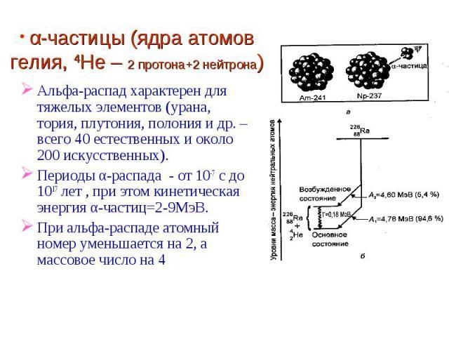 α-частицы (ядра атомов гелия, 4He – 2 протона+2 нейтрона) Альфа-распад характерен для тяжелых элементов (урана, тория, плутония, полония и др. – всего 40 естественных и около 200 искусственных).Периоды α-распада - от 10-7 с до 1017 лет , при этом ки…
