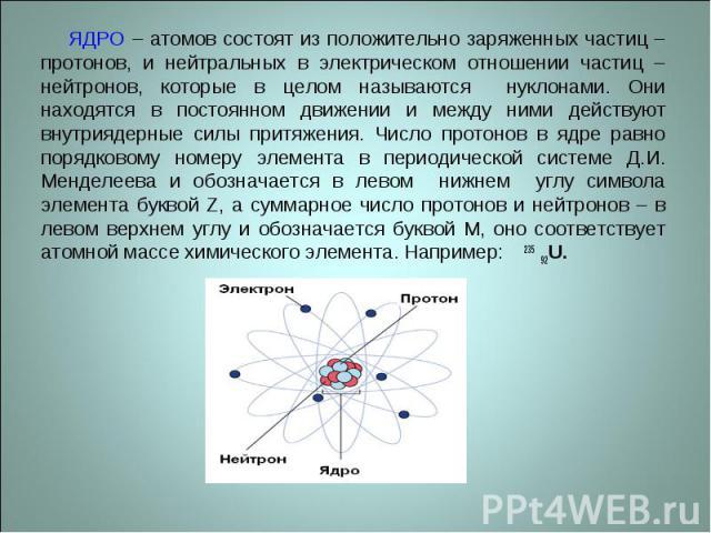 ЯДРО – атомов состоят из положительно заряженных частиц – протонов, и нейтральных в электрическом отношении частиц – нейтронов, которые в целом называются нуклонами. Они находятся в постоянном движении и между ними действуют внутриядерные силы притя…