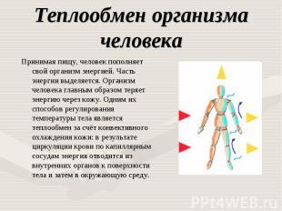 Теплообмен организма человека Принимая пищу, человек пополняет свой организм эне