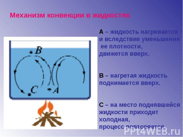 Механизм конвекции в жидкостях А – жидкость нагревается и вследствие уменьшения ее плотности, движется вверх.В – нагретая жидкость поднимается вверх.С – на место поднявшейся жидкости приходит холодная, процесс повторяется.