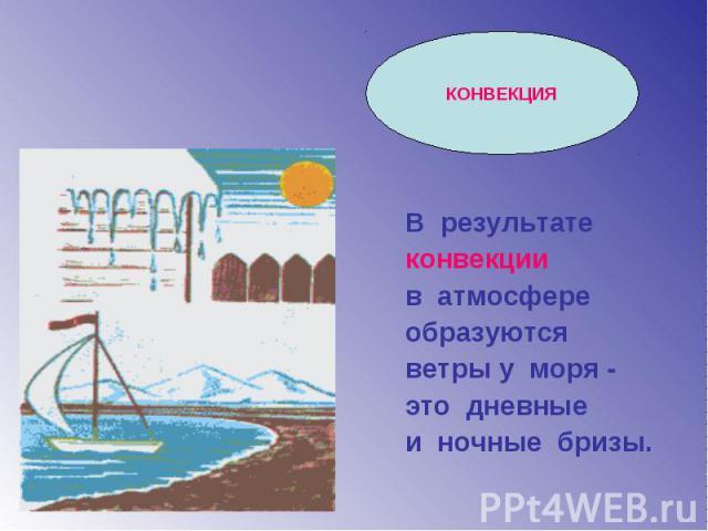 В результате конвекции в атмосфере образуются ветры у моря - это дневные и ночные бризы.
