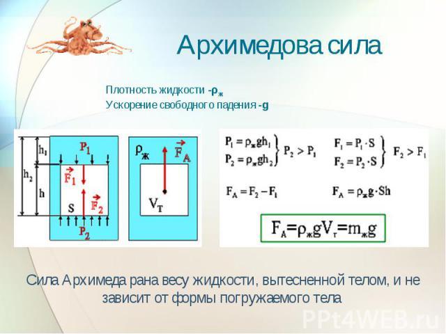 Архимедова сила Плотность жидкости -ρж Ускорение свободного падения -g Сила Архимеда рана весу жидкости, вытесненной телом, и не зависит от формы погружаемого тела