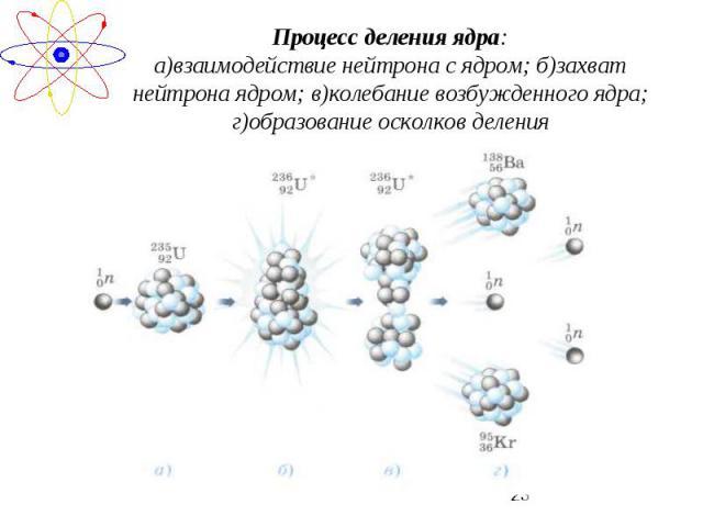 Процесс деления ядра:а)взаимодействие нейтрона с ядром; б)захват нейтрона ядром; в)колебание возбужденного ядра; г)образование осколков деления