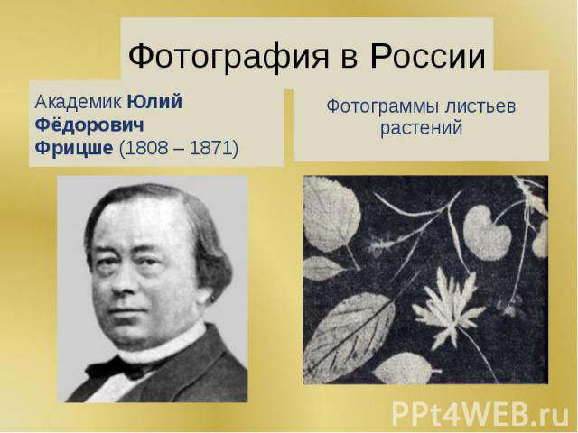 Фотография в России АкадемикЮлий Фёдорович Фрицше(1808 – 1871) Фотограммы листьев растений