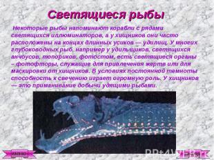 Светящиеся рыбы Некоторые рыбы напоминают корабли с рядами светящихся иллюминато