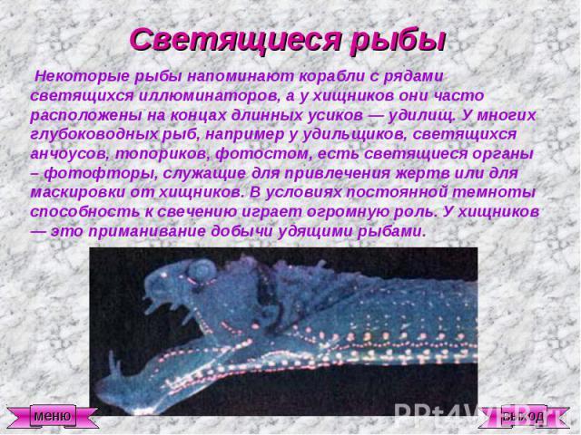 Светящиеся рыбы Некоторые рыбы напоминают корабли с рядами светящихся иллюминаторов, а у хищников они часто расположены на концах длинных усиков — удилищ. У многих глубоководных рыб, например у удильщиков, светящихся анчоусов, топориков, фотостом, е…