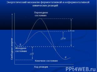 Энергетический механизм ферментативной и неферментативной химических реакций Пер