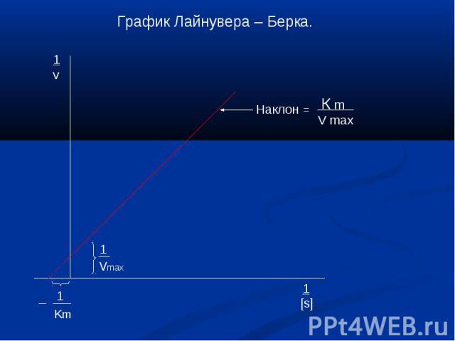 График Лайнувера – Берка. Наклон =