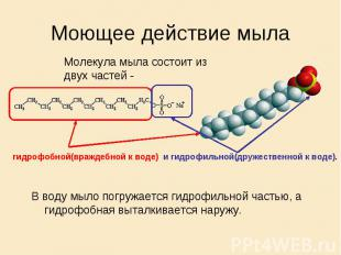 Моющее действие мыла Молекула мыла состоит из двух частей - гидрофобной(враждебн