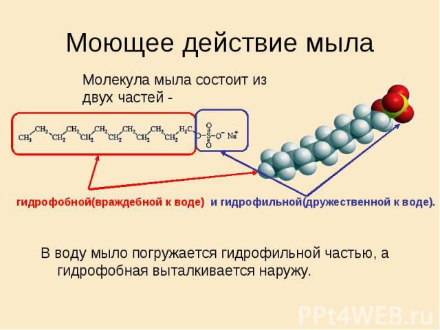 Моющее действие мыла Молекула мыла состоит из двух частей - гидрофобной(враждебной к воде) и гидрофильной(дружественной к воде). В воду мыло погружается гидрофильной частью, а гидрофобная выталкивается наружу.