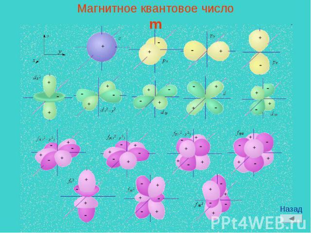 Магнитное квантовое числоm