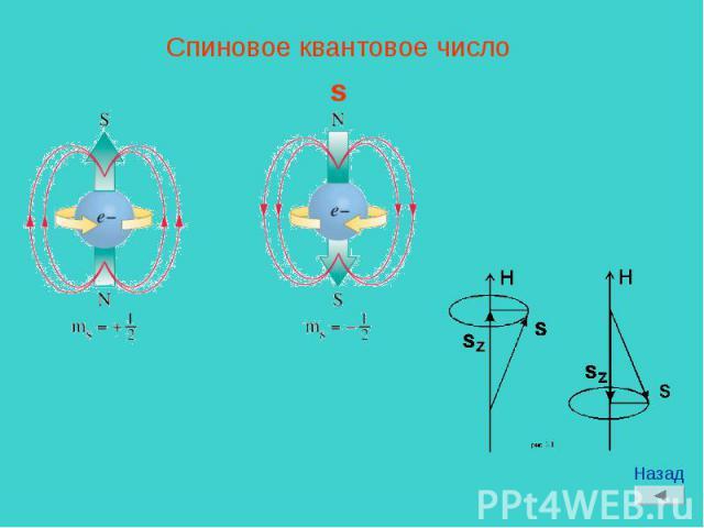 Спиновое квантовое числоs