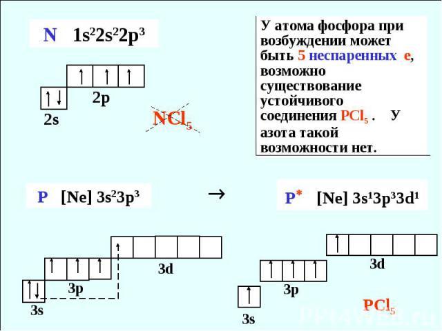 У атома фосфора при возбуждении может быть 5 неспаренных е, возможно существование устойчивого соединения PCl5 . У азота такой возможности нет.
