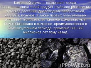 Каменный уголь — осадочная порода, представляющая собой продукт глубокого разлож