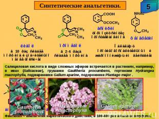 Синтетические анальгетики. Салициловая кислота в виде сложных эфиров встречается