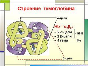 Строение гемоглобина Hb = α2β2 : – 2 α-цепи– 2 β-цепи– 4 гема 4%
