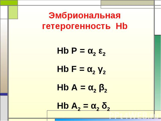 Эмбриональная гетерогенность Нb Нb P = α2 ε2 Hb F = α2 γ2 Hb A = α2 β2 Hb A2 = α2 δ2