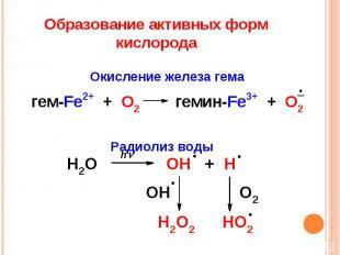 Образование активных форм кислорода Окисление железа гема Радиолиз воды