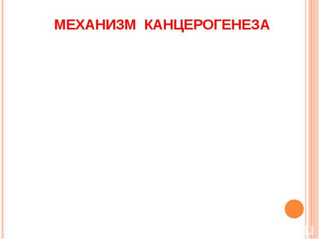 МЕХАНИЗМ КАНЦЕРОГЕНЕЗА