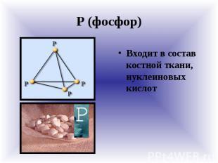 Р (фосфор) Входит в состав костной ткани, нуклеиновых кислот