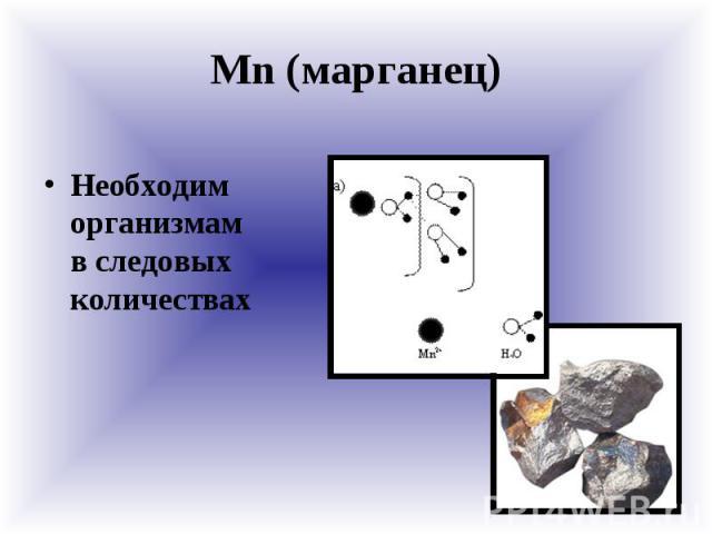 Mn (марганец) Необходим организмам в следовых количествах