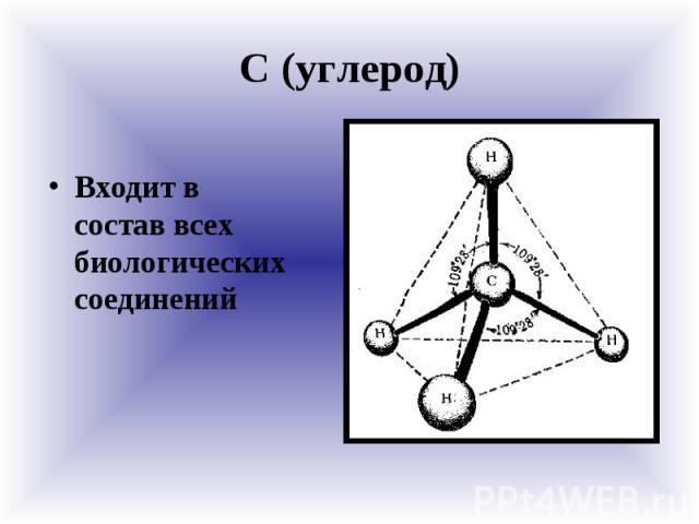 С (углерод) Входит в состав всех биологических соединений