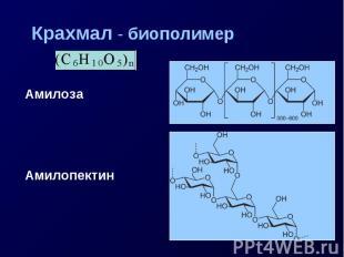 Крахмал - биополимер Амилоза Амилопектин