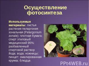 Осуществление фотосинтеза Используемые материалы: листья растения пеларгония зон